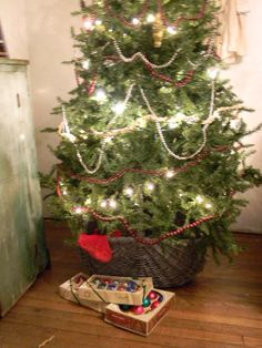 our BIG tree in a basket ~ {{sorry about the blur}} ~ ©notforgotten farm