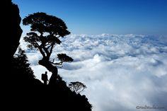 The Holy Ridge 聖稜線 by neilwade, via Flickr