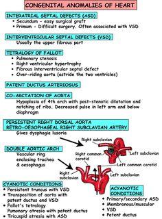 pediatric cardiac anomalies image | Heart Anomalies http://www.instantanatomy.net/thorax/areas/heart ...