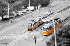 Budapestphotos: Photo