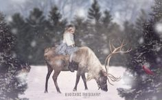 Photoshop Composite: Winter Dreaming