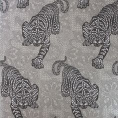 Discover the Matthew Williamson Tyger Tyger Wallpaper - W6542-02 at Amara