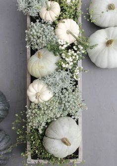 Table setting- mix succulents w white pumpkins and steel