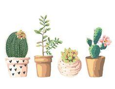 Potted Cactus Art, Succulent Illustration