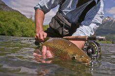 Como practicar la pesca deportiva te hace ser mejor persona