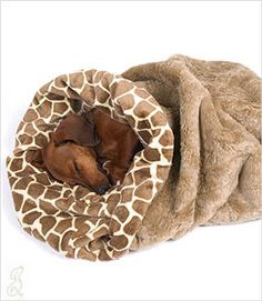 Giraffe Cuddle Cup Bed~Izzy SO needs this~ he already chews holes in blankets trying to make his own :) I am going to make him one!