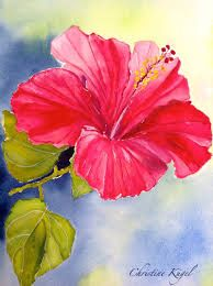 Résultats de recherche d'images pour « esquisse de vie hibiscus painting » Watercolor Feather, Watercolor Artists, Watercolor Flowers, Watercolor Paintings, Watercolors, Lilies Drawing, Hibiscus, Mini Canvas, Happy Trails