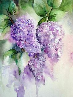 80 Easy Watercolor Painting Ideas for Beginners - Flieder - Aquarell - Malen Watercolour Painting, Watercolor Flowers, Watercolors, Lilac Painting, Simple Watercolor, Watercolor Tattoo, Painting & Drawing, Painting Studio, Lilac Blossom