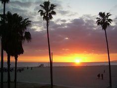 Venice Beach California - Google Search