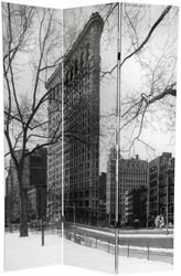 New York City photograph of Flat Iron Building and skyline