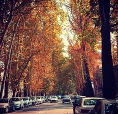 Tehran #irantravelingcenter #iranvisa #mustseeiran