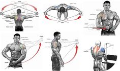 Shoulders Cable Exercises