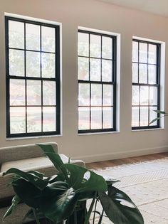 How to Paint Black Window Frames and Panes - Within the Grove House Windows, Windows And Doors, Front Doors, Black Vinyl Windows, Black Windows Exterior, Big Windows, Exterior Paint, Interior And Exterior, Exterior Design