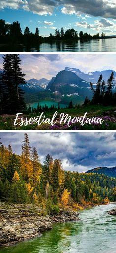 Essential Montana