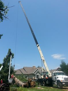 Emergency Tree Removal Longmont CO with the 40ton Crane