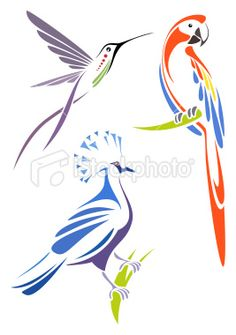 Stylized birds - scarlet macaw, crimson topaz and victoria crowned pigeon - stock vector Stencil Patterns, Stencil Designs, Designs To Draw, Animal Line Drawings, Bird Drawings, Bird Line Drawing, Bird Stencil, Stencil Art, Damask Stencil