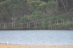 El puente colgante del Andreoni