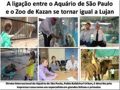 Mural Animal: A ligação entre o Aquário de São Paulo e o Zoo de Kazan se tornar igual a Lujan