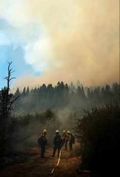 Members of the U.S. Forest Service firefighting crew work to control hot spots at the Rim Fire in the Stanislaus National Forest Tuesday Aug. 20, 2013.