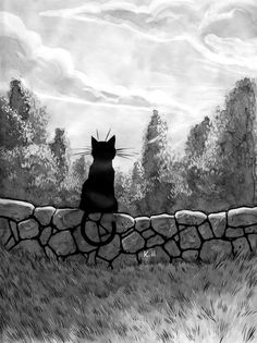Summer - Kalle Malloy; This reminds me of my wonderful black kitty Lafayette. <3