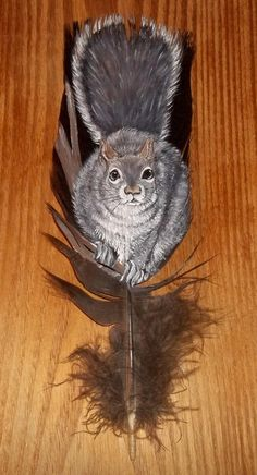 Painted feather Squirrel.