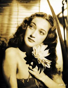 Enthusiast of Classic Movie , Hollywood Star , History , Antique , Art and The Ancient World Old Hollywood Glamour, Golden Age Of Hollywood, Vintage Hollywood, Hollywood Stars, Classic Hollywood, Hollywood Icons, Dorothy Lamour, Classic Actresses, Hollywood Actresses