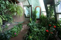 Love the idea of having gardens inside my home... for sure going to do this whether I get an Earthship or not!