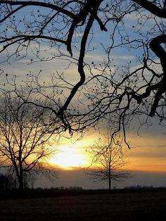 Delta Winter, Charlie Stevens