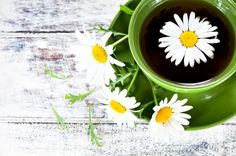Learn the chamomile tea benefits, origin and uses! Chamomile has been used for centuries providing a variety of healthful benefits, for people and pets! Discover how chamomile can help you today and learn the cautions of using it.