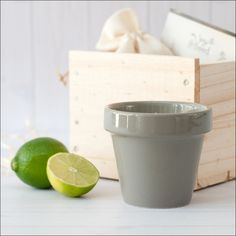 The Rustic Collection - Lime & Coconut Soy Candle - Soy & Seed - 1