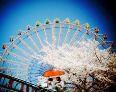 Vista Quest VQ1015 ENTRY - 春の遊園地 -  - Camera Talk -