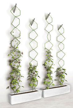 Beautiful Minimalist Vertical Garden For Your Home Backyard goodsgn com 21