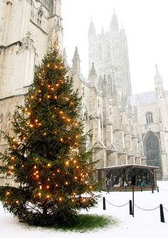 Canterbury Cathedral, Snowing, Christmas Tree Lights and Nativity, Kent, England. Now I have to go back at Christmas! Christmas Tree With Snow, Noel Christmas, Merry Little Christmas, All Things Christmas, Winter Christmas, Christmas Lights, English Christmas, Xmas, Christmas Scenery