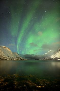 Aurora - Ersfjordbotn, Norway