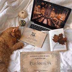 Cute Black Wallpaper, Fall Wallpaper, Hermione, Hogwarts Classes, Harry Potter Aesthetic, Autumn Cozy, Autumn Aesthetic, Coffee And Books, Autumn Photography