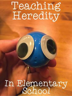 Teaching heredity in elementary school can be really fun and informational for younger students! This post shares a fun activity for teaching heredity. Primary Science, Third Grade Science, High School Science, Science Classroom, Fourth Grade, Life Science, Classroom Ideas, Future Classroom, Science Resources
