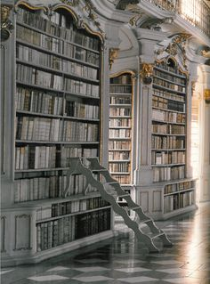 If ever there was a real library from Beauty and the Beast, this would be it.