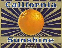California Sunshine orange crate label.