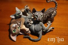 Oleum Cat Pile | Flickr - Photo Sharing!