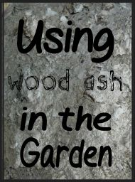 Using wood ash in the garden and easy tips on how to test your soil's ph level without buying a kit