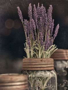 #lavender #aromatherapy #relaxation http://www.agrariahome.com/lavender-and-rosemary-airessence-diffuser/
