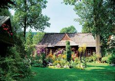 Pani Ewelina znana jest we wszystkich ogrodach botanicznych w Polsce, więc czasem dostaje jakieś ciekawe kwiatowe nowinki. Podsyła je także ojciec Jezuita z Warszawy, który hoduje klematisy i lilie. Jeden z białych, wyhodowanych przez siebie liliowców nazwał Ewelina Pęksowa.