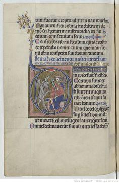 Psalterius [psautier latin dit de saint Louis et de Blanche de Castille]