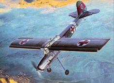 Fieseler Fi.156 Storch | Flickr - Photo Sharing!