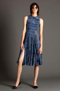 Elika Printed Silk Dress with Pleats