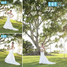 Gulfside Media Photography, Fort Myers Wedding Photographer, Edison Ford Winter Estate, Edison Ford Winter Estate Weddings, Edison Ford Estate Weddings, Edison Restaurant, Edison Restaurant Weddings, Edison Ford Estate Wedding Photographer #gulfsidemedia