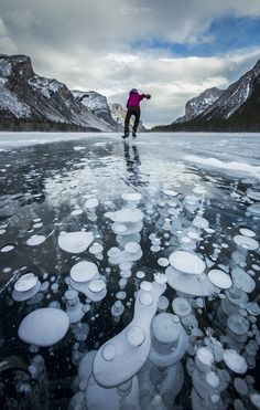 Bubbles of methane in a frozen lake. The photos from: Alaskan lake, USA -Abraham Lake, Canada- Lake Minnewanka, Canada - Banff National Park in Alberta Canada. Banff Alberta, Alberta Canada, Banff Canada, Banff National Park, National Parks, Ice Bubble, Frozen Bubbles, Nature Photography, Lakes