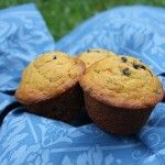 4 Weeks to Fill Your Freezer: Pumpkin Chocolate Chip Muffins (Day 19)