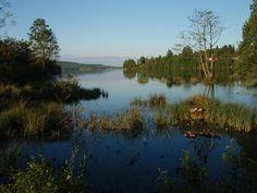 Royère-de-Vassivière Lac de Vassivière.