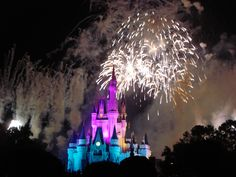 Disney World Fire Works